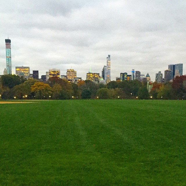 great-lawn-central-park